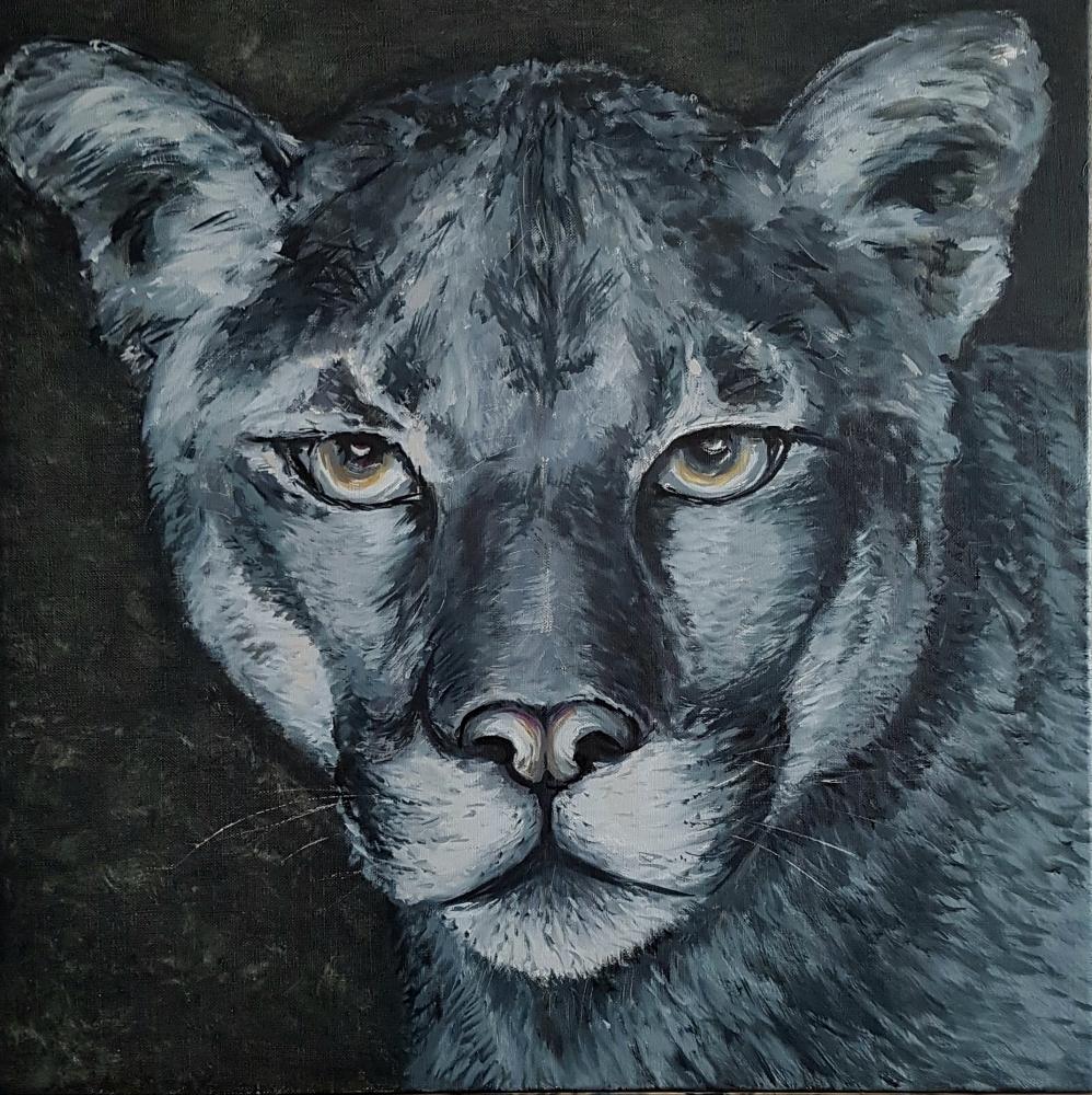 Puma, Schwarz-Weiß
